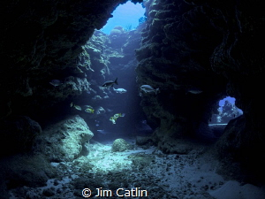 Dragons Lair, EastEnd, Grand Cayman by Jim Catlin