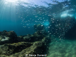 Trying to catch the atmosphere of Lanzarote underwater. by Alexia Dunand