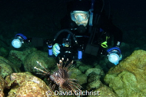 Diver moves in close to photograph a Lion Fish (Pterois v... by David Gilchrist