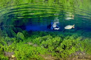 Freshwater encounter by Raoul Caprez