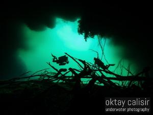 Emerald Green by Oktay Calisir