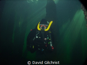 Diver using Vintage Double Hose Regulator at the Swing Br... by David Gilchrist