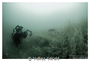 Diver taking a shoot of an adult pike in a little lake by Vulliez Gérald