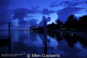 """Blue hour bliss"" by Ellen Cuylaerts"