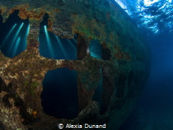 Telamon Wreck illuminated! by Alexia Dunand