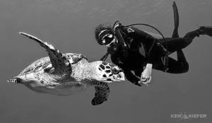 My lovely wife Kimber taking some underwater modeling tip... by Ken Kiefer