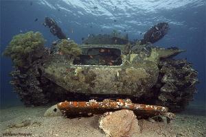 The Tank by Iyad Suleyman