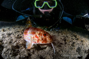 Selfie with the Mullet fish by Marco Gargiulo