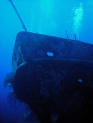 Wreck of the Austin Smith. Aquacat Liveaboard trip. Jan 6... by Allyssa Arnold