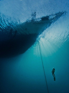 Free diver ascending on the anchor chain of Silolona by Paul Colley