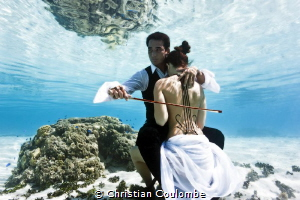 Lagon cellist on mermaid by Christian Coulombe