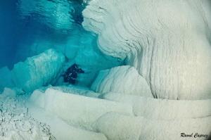 Diving in wonderland by Raoul Caprez