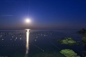 full moon rising by Mathieu Foulquié