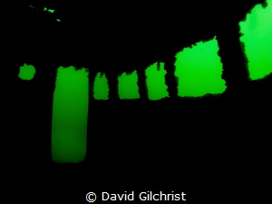 Silhouette shot in the wheelhouse of boat at Welland Scub... by David Gilchrist