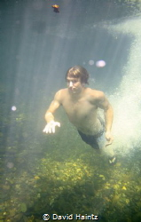 My nephew diving into the Blue Hole in the Daintree Forest, by David Haintz