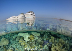 The end of a day on the Red Sea. Liveaboard paradise. by Alexia Dunand