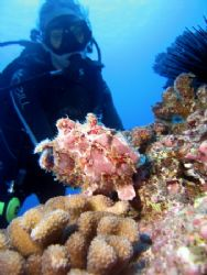 meghan and the frogfish canon s70 w/ inon strobe makena... by Dylan Matheson