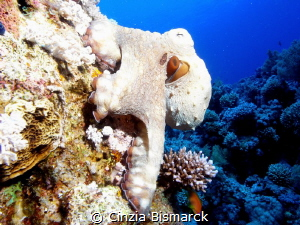 Got it!