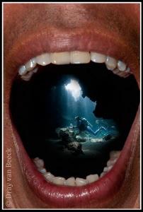 Cavity diving by Dray Van Beeck