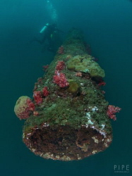oil rig wreck of Brunei by Kf Leong