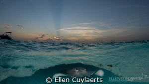 Good night!