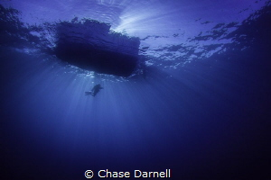 """""""Serenity""""   A diver completes his safety stop while be... by Chase Darnell"""