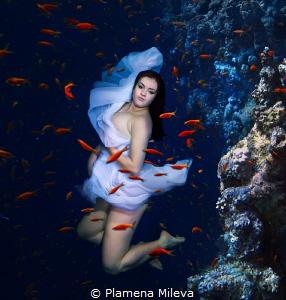 Expectations maternity by Plamena Mileva