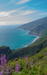 Big Sur coast, California. by Henry Schmitz