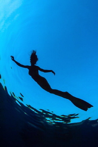 Mermaid Silhouette by Paul Colley