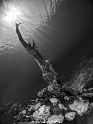 [:b:]Capodacqua Lake.[:/b:] by Francesco Pacienza