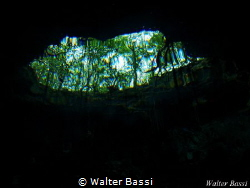 the eye of the cenote Taj Mahal cenote by Walter Bassi