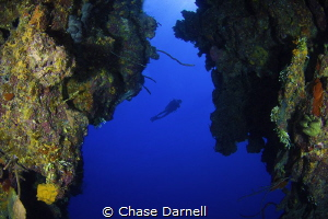 Never stop exploring!  North Wall, Grand Cayman by Chase Darnell