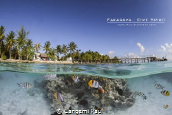 Dive spirit Fakarava dive center, north pass of Fakarava ... by Cangemi Paul