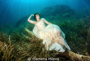 Wakening    by Plamena Mileva