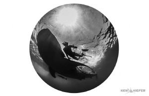 My wife next to a whale shark.  8mm fisheye w/ full frame... by Ken Kiefer
