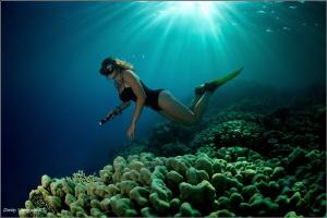 Abu Nuhas reef by Dmitry Vinogradov