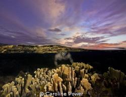 Sunset Snorkel in Paradise by Caroline Power