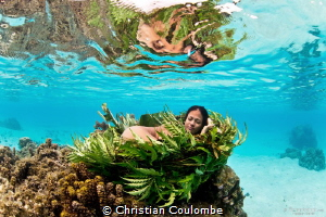 Nestling Mermaid by Christian Coulombe