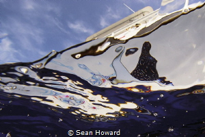 Living the Dream Divers in Abstract by Sean Howard