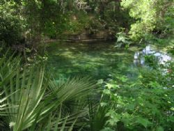 Blue Springs Boil in the center of this pool of water is ... by Ray Eccleston