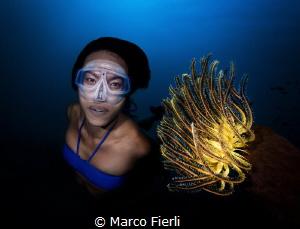 "Ai Futaki Guinness World Records for ""The Longest Distan... by Marco Fierli"