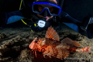 Selfie with gurnard fish by Marco Gargiulo