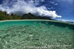 Moorea, French Polynesia by Frédérique Legrand