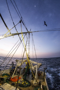 scientific campaign on a shrimper (french guiana) by Mathieu Foulquié