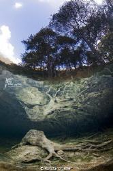 Thema: Wenn die Natur selbst der Künstler ist...  Fernst... by Konstantin Killer