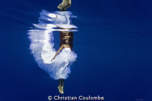 Mermaid Bride by Christian Coulombe