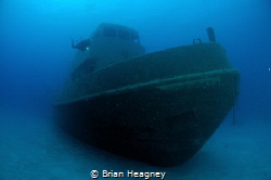 A recently submerged tug becomes an artificial reef. Niko... by Brian Heagney