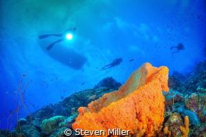 Bonaire sky by Steven Miller