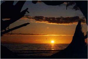 West coast, Washington, USA; Nikon F5, 35-70mm  by Quinn F. Harry