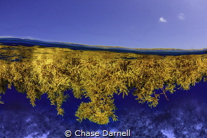 """""""Drifting with Time"""" by Chase Darnell"""